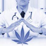Warum wirkt CBD überhaupt Eine biochemische Erklärung zum Endo-Cannabinoid-System
